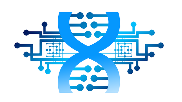 疾患マーカーを探索するための遺伝子データ解析